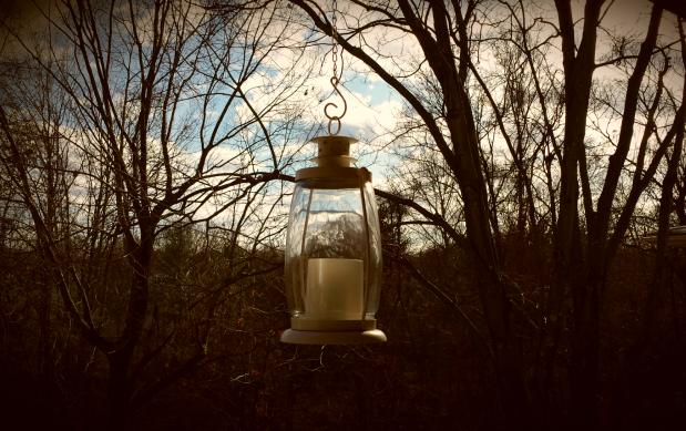 lamp-rosy